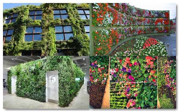 jardines verticales para evitar la contaminacion